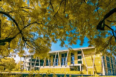 Ahmedabad University