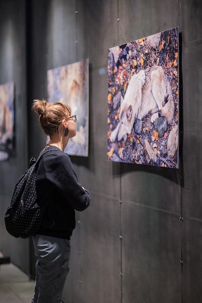 Дикая перспектива | фотовыставка