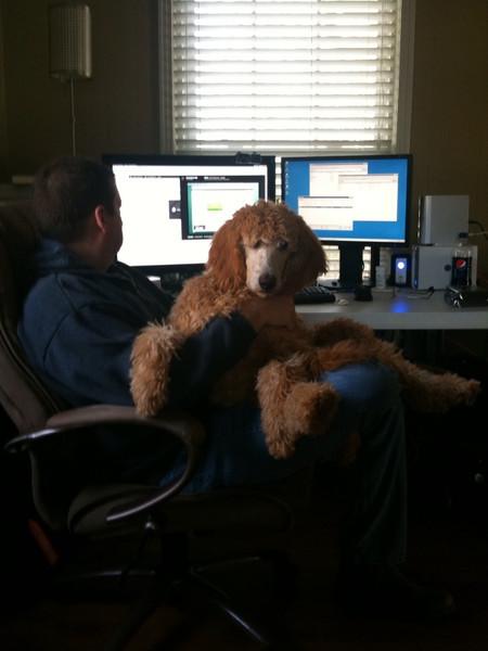 Winnie on Brian's lap.jpg