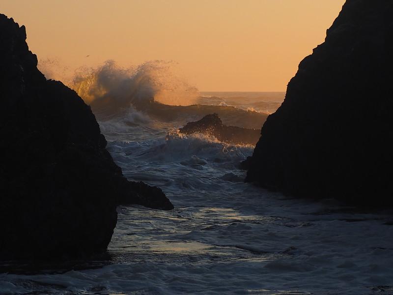 Seal Rock Monday 16.JPG