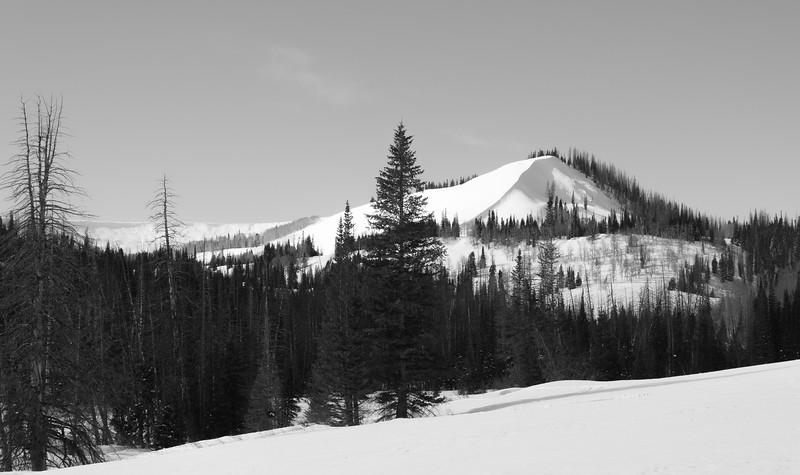 Sundance-29.jpg