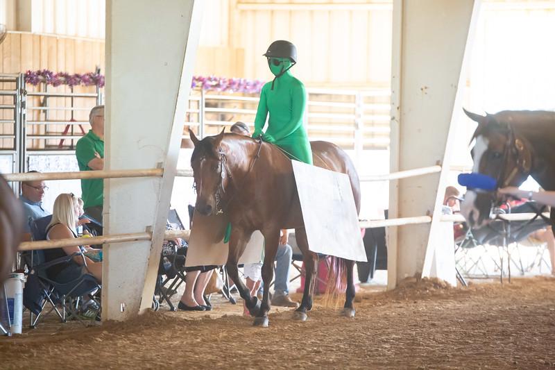HorseCostume-29.jpg