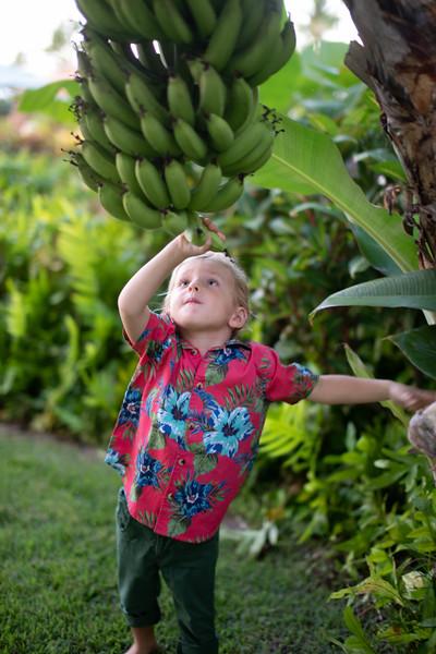 grand hyatt kauai-73.jpg