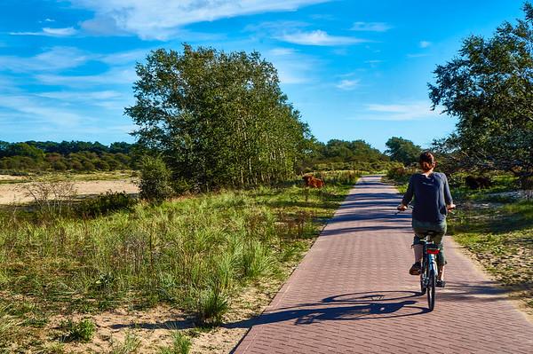Zuid-Kennemerland National Park