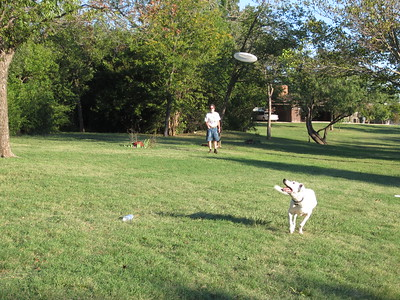 Kynda's Frisbee Day!