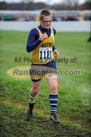 Finish, Gallery 1 - D1 Boys - 2013 MHSAA LP XC Finals