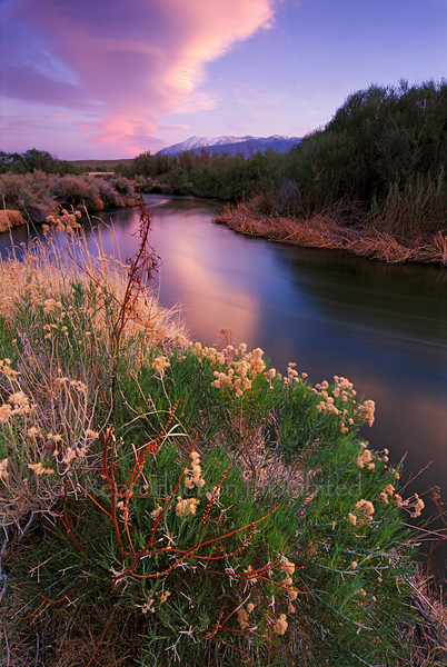 River Dance Eastern Sierra, CA