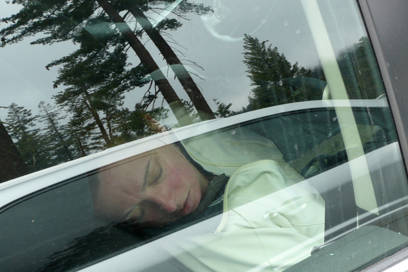 This Vacation Is Exhausting! Sequoia NP