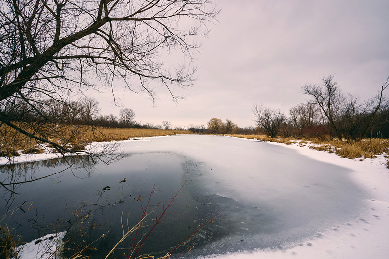 Silver Creek Conservation Area 19.jpg