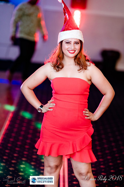 Specialised Solutions Xmas Party 2018 - Web (105 of 315)_final.jpg