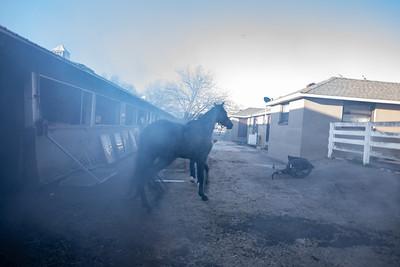 Belmont Barn 60 Fatal Fire 4/13/21