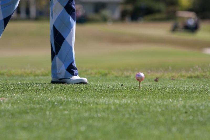 2010_09_20_AADP Celebrity Golf_IMG_0011_WEB_EDI_CandidMISC.jpg