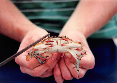 1982_09 Crab Fishing