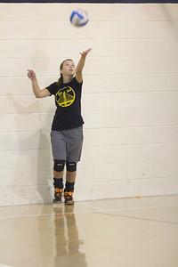 Volleyball Team 2016