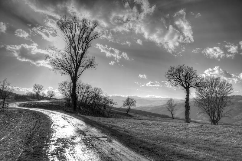 Path - Scandiano, Reggio Emilia, Italy - February 9, 2014