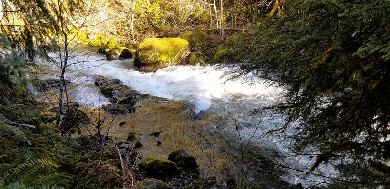 Interesting chute just north of Music Creek confluence- Wash Creek