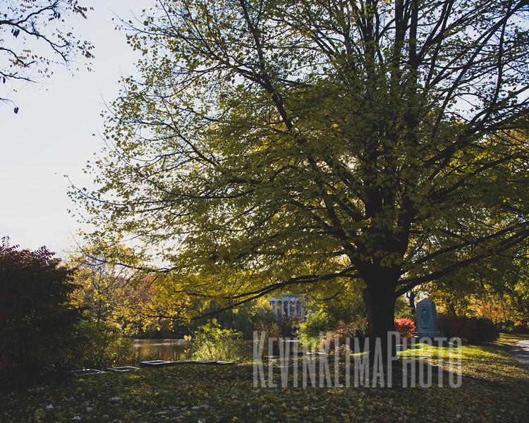 Graceland110218-273.jpg