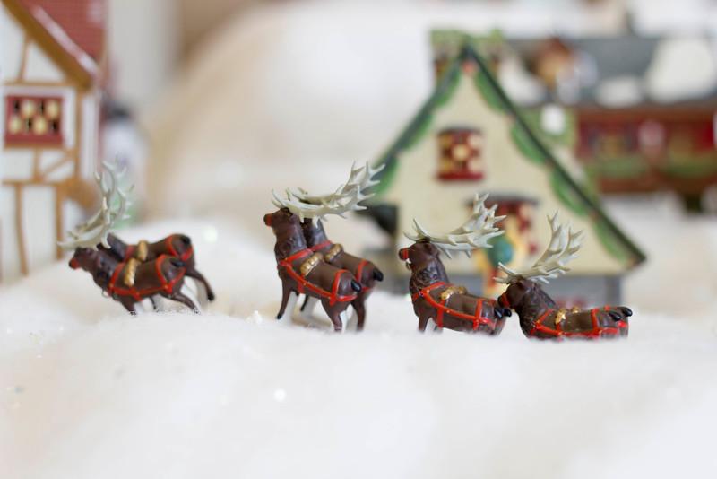2015_12_04_Christmas_Villiage_9148.jpg