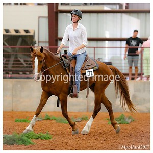 Ranch Horse Competition - RP070817
