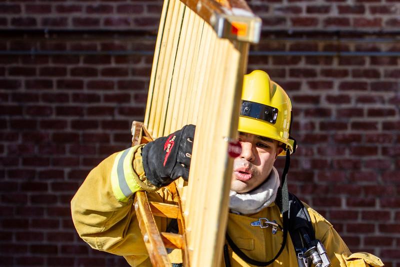 PFD_PFA_120418_Ladders_7511.jpg