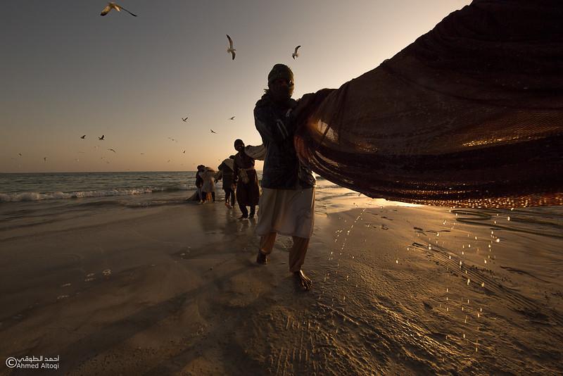 Sardine Season (69)- Dhofar.jpg