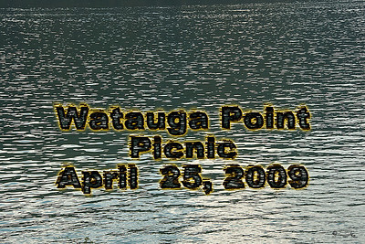 Watauga Point Picnic
