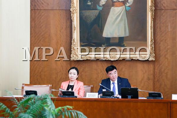 Улсын Ерөнхий прокурорын саналаар УИХ-ын гишүүн Н.Номтойбаярын бүрэн эрхийг түдгэлзүүлэх асуудлыг хэлэлцэж байна