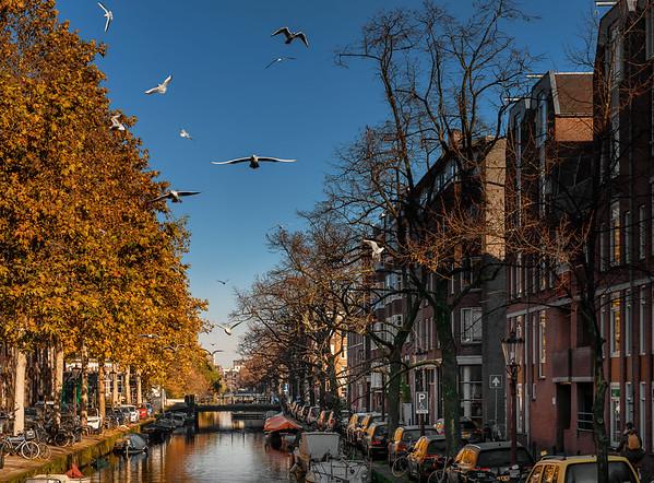 2019-11 Netherlands