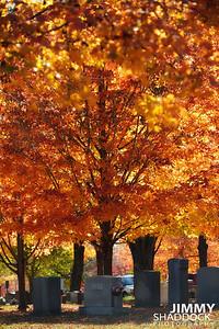 Maplewood Cemetery October 21