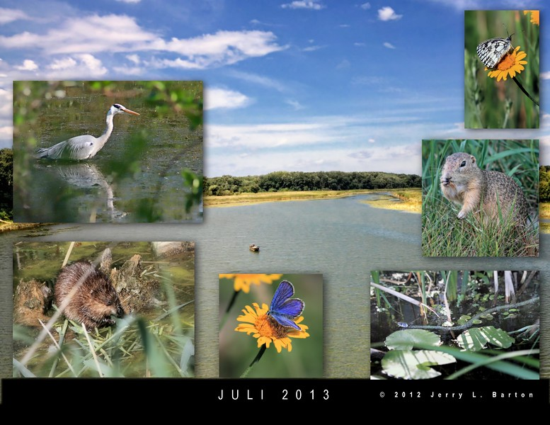 It's that time of year again. The draft copy of my 2013 calendar is in the mail to me, so I can make any final changes before printing up (and I hope selling) them.  Here is a snapshot of July's picture.  The calendar has Austrian and US holidays.