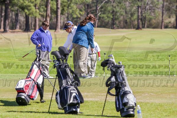 HHA Golf vs. St. Johns vs. Patrick Henry 3-13-14