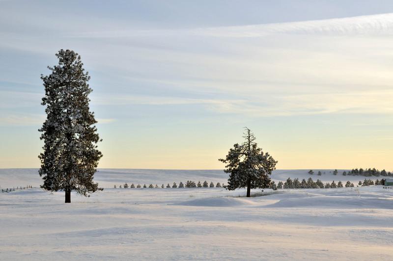 Winter in the Northwest