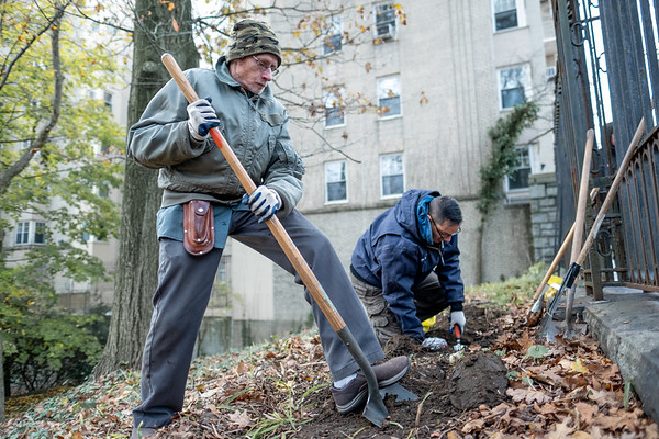 Volunteer Day, Harvest Fest & Fall Photography Worshop by the Fort Tryon Trust