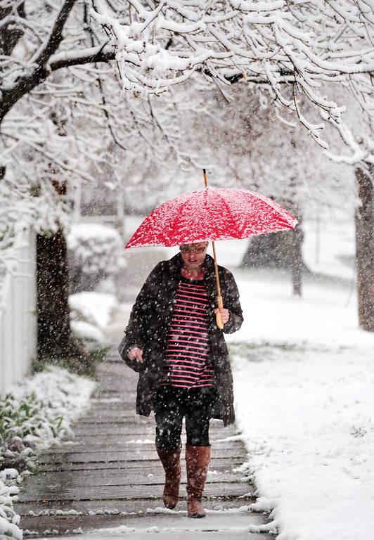 . Jennifer Duensing, takes careful steps on a slippery sidewalk during the Wednesday morning snow in Boulder, Colo., on May 1, 2013.   After a warm weekend, snow is falling in Colorado.  (AP Photo/The Daily Camera, Paul Aiken)