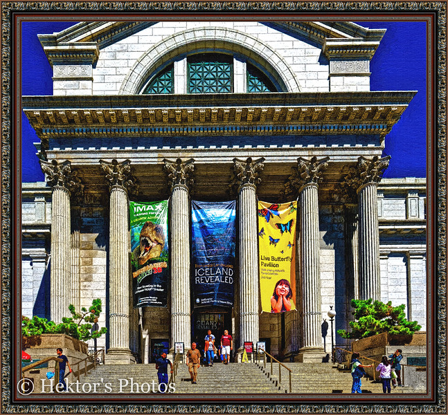 National History Museum-2.jpg