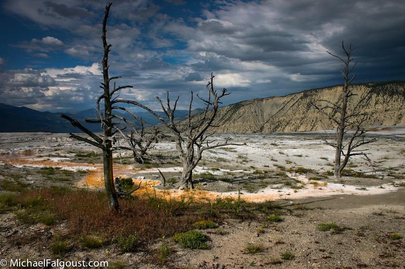 Yellowstone-041.jpg