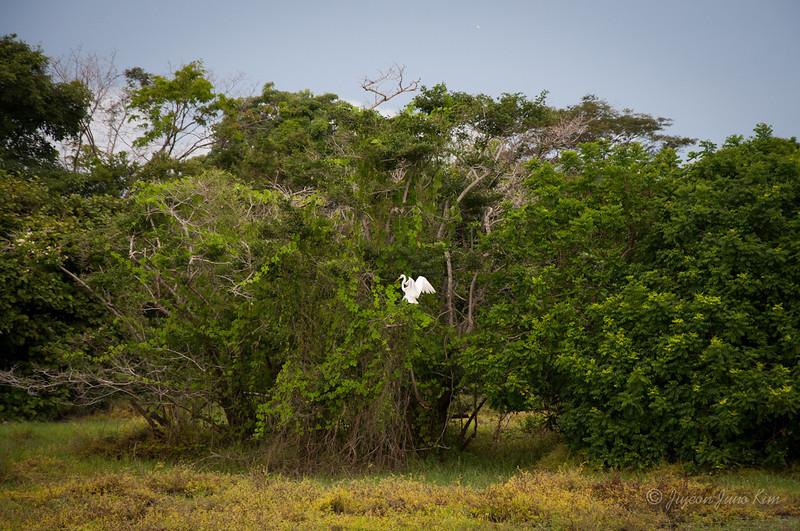 Mexico-Chiapas-9495.jpg