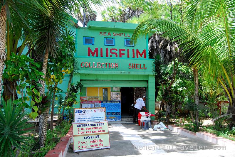 Seashell Museum in Diu.