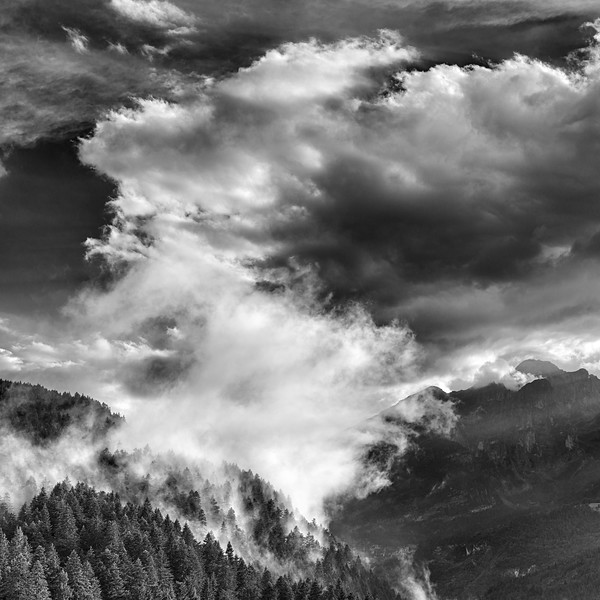 After the Rain - Andalo, Trento, Italy - August 22, 2020