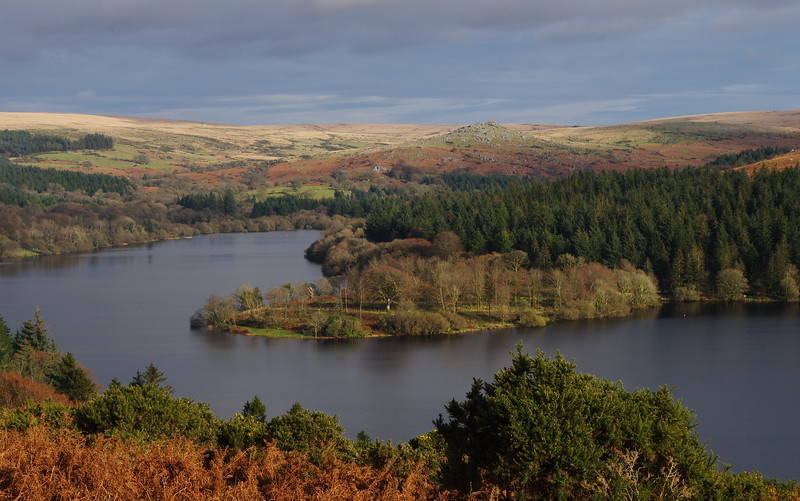 Rosemary - When it was possible to be alone at Burrator