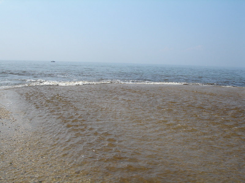 Cape May 2 002.jpg