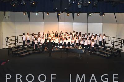 Robinson Chorus