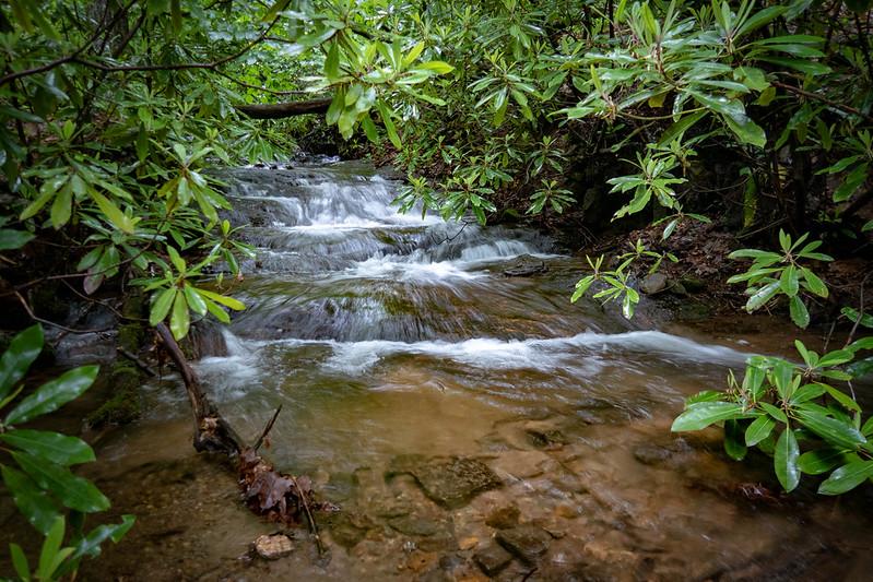 Bent Creek - Lower Sidehill Loop  (5.1 miles; d=6.30)