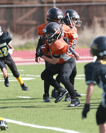 CYSL Vipers vs Black Knights 8U