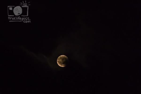 {{.The.Moon.}}