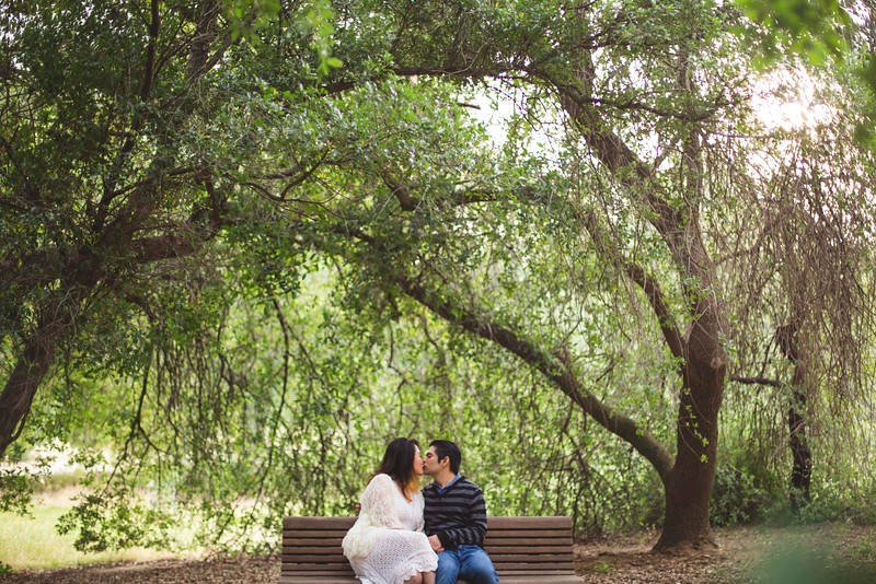 davis-wooded-tree-engagement-bench.jpg