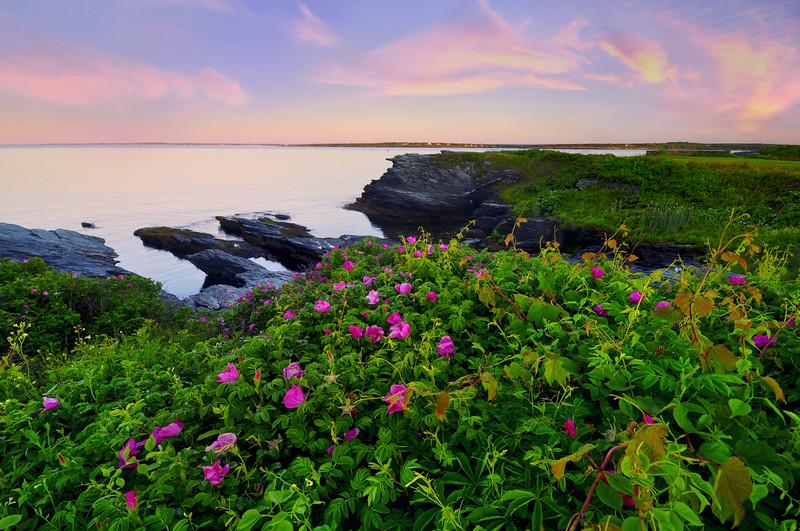 Ocean Drive Sunrise, Newport, RI