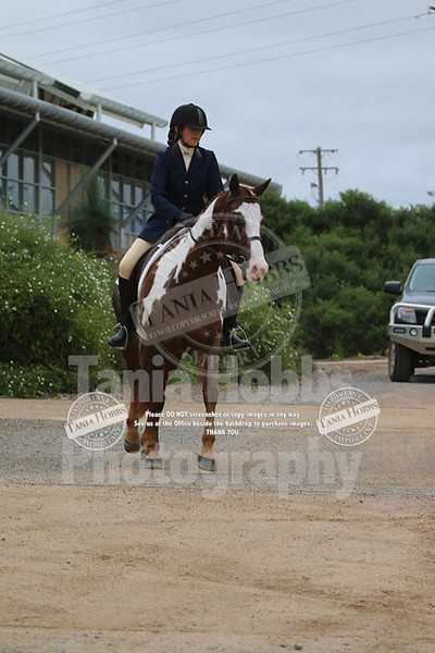 Emma Dressage Sunday