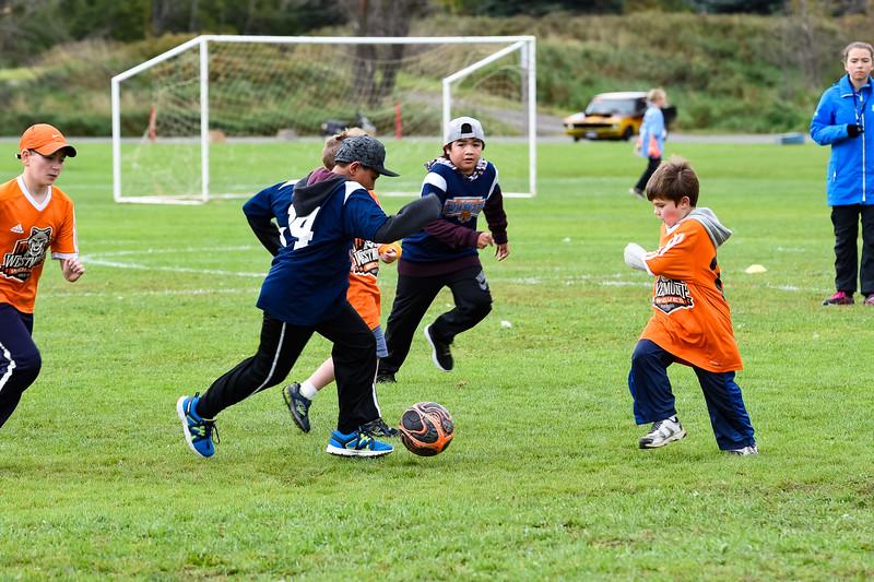 Westmount Soccer-84.jpg