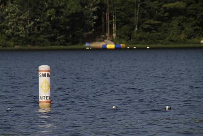 Trout Lake 2010